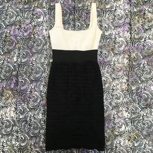Aqua Bodycon Black and White Dress